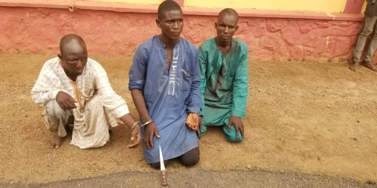 Three herdsmen arrested in Ogun State for killing a farmer – Police