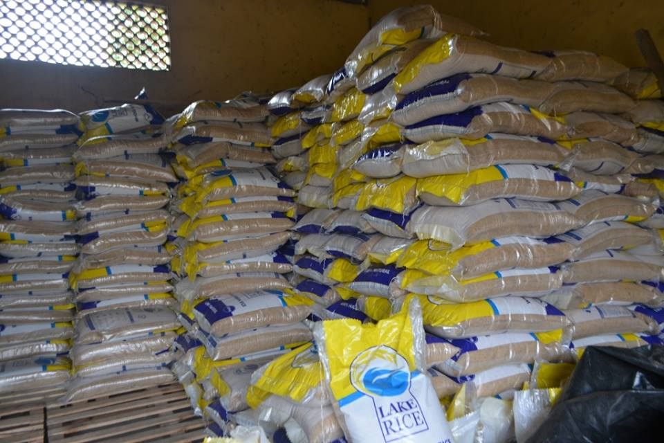 Lagos to acquire 32,000-hectare farmland for rice cultivation